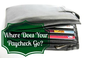 where does your paycheck go