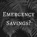 What is Emergency Savings For?