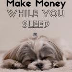How to Make Money While You Sleep