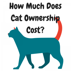 How Much DoesCat OwnershipCost-