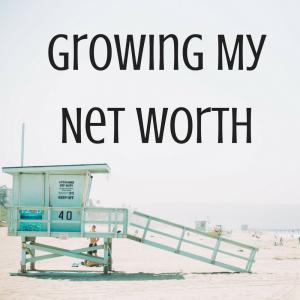 growing my net worth