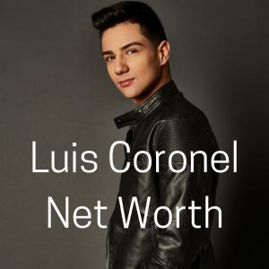 luis colonel net worth