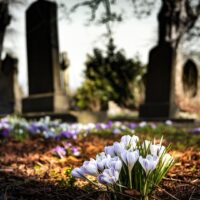 what happens to your stuff when you die